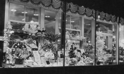 baurs-window